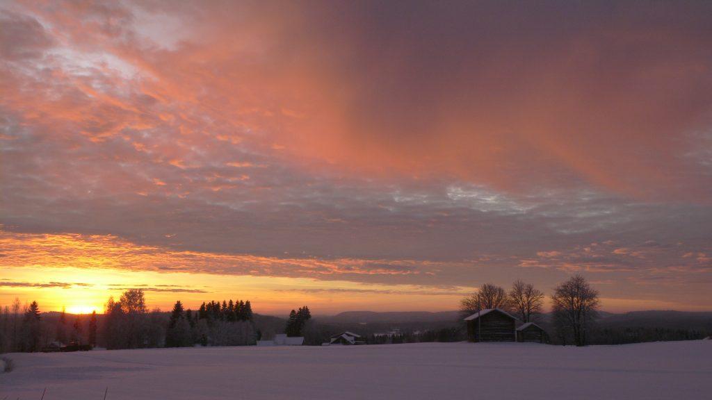 Auringonlasku Koikkalassa 2006